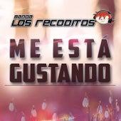 Me Está Gustando by Banda Los Recoditos