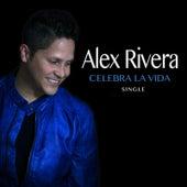 Celebra la Vida by Alex Rivera