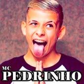 Mc Pedrinho de Mc Pedrinho