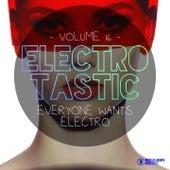 Electrotastic, Vol. 16 de Various Artists