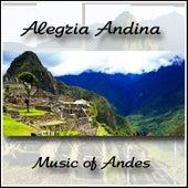 Alegria Andina de Wayra of Andes