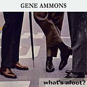 What's afoot ? de Gene Ammons
