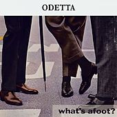 What's afoot ? by Odetta