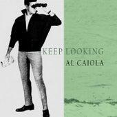 Keep Looking by Al Caiola