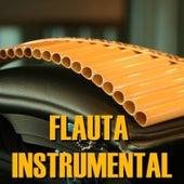 Flauta Instrumental by Marc Ross