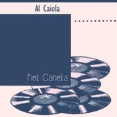 Piel Canela by Al Caiola