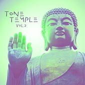 Tone Temple, Vol. 2 de Various Artists