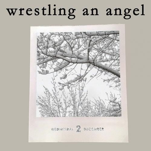Wrestling An Angel by Carolina Liar