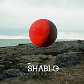 The Second Feeling by Shablo