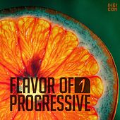 Flavor of Progressive 01 by Various Artists