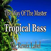 The Way Of The Master / Tropical Bass (Inspiring Proghouse Meets Vibrant Deephouse Music) - Single by Paduraru