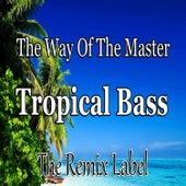 The Way Of The Master / Tropical Bass (Inspiring Proghouse Meets Vibrant Deephouse Music) - Single de Paduraru