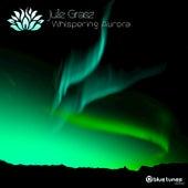 Whispering Aurora by Jule Grasz
