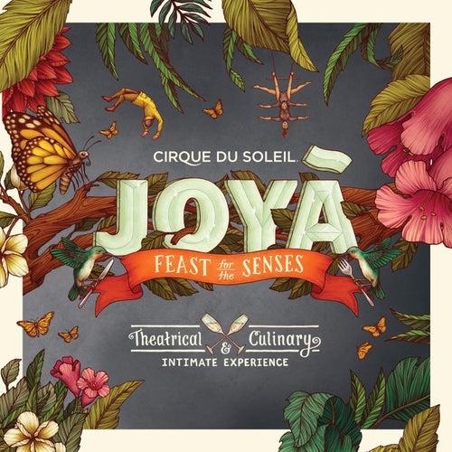 Joyá by Cirque du Soleil