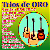 Trios de Oro Cantan Boleros by Various Artists
