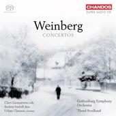 WEINBERG, M.: Clarinet Concerto / Flute Concerto No. 2 / Flute Concerto / Fantasia by Various Artists