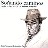 Soñando Caminos by Alejandro Zabala