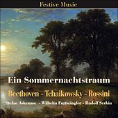 Ein Sommernachtstraum by Various Artists