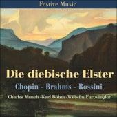 Die diebische Elster by Various Artists