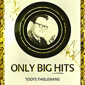 Only Big Hits by Toots Thielemans