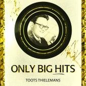 Only Big Hits von Toots Thielemans