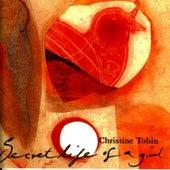 Secret Life Of A Girl by Christine Tobin