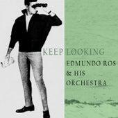 Keep Looking by Edmundo Ros