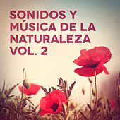 Sonidos y Música de la Naturaleza, Vol. 2 de Various Artists