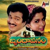 Brundaavanam (Original Motion Picture Soundtrack) by Various Artists