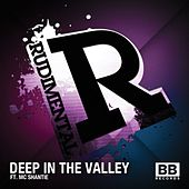 Deep in the Valley by Rudimental