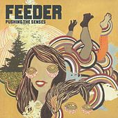 Pushing the Senses by Feeder