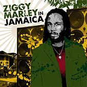 Ziggy Marley in Jamaica de Various Artists