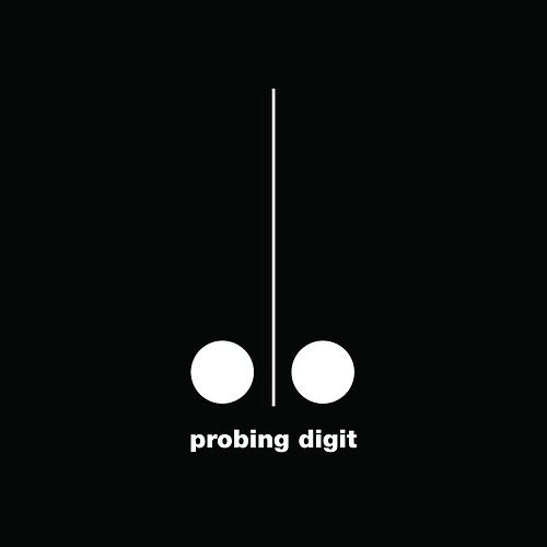 Probing Digit by Probing Digit