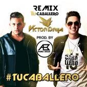 Tu Caballero (Remix) [feat. Andrés Badler] by Victor Drija