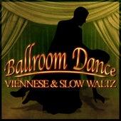 Ballroom Dance: Viennese & Slow Waltz von The New 101 Strings Orchestra