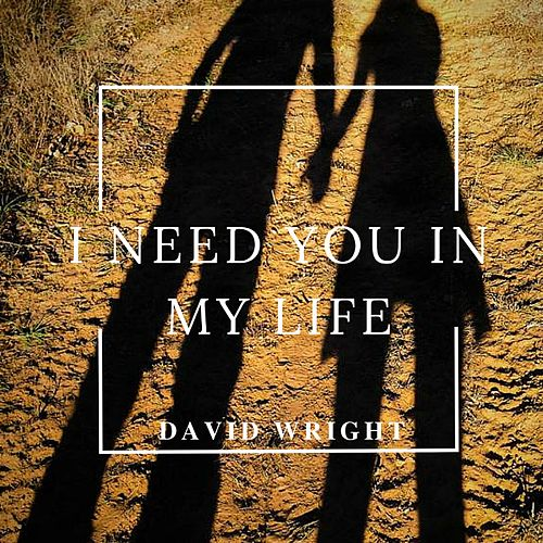 I Need You in My Life by David  Wright
