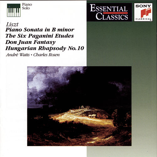 Liszt: Works for Piano by Various Artists