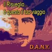 Il Risveglio...è questo il tuo viaggio, Vol. 1 by Dany