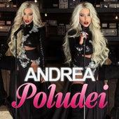 Poludei by Andrea