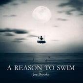 A Reason to Swim (Deluxe Version) by Joe Brooks