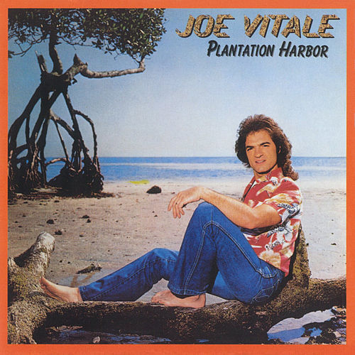 Plantation Harbor by Joe Vitale