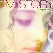 The Perfect Flaw by Tim Story