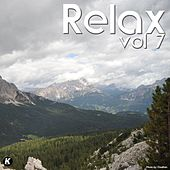 Relax, Vol. 7 de Various Artists