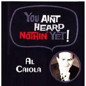 You Aint Heard Nothin' Yet by Al Caiola