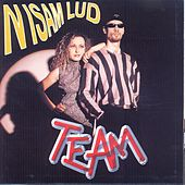 Nisam lud by The Team