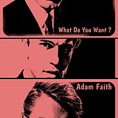What Do You Want? by Adam Faith