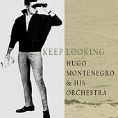Keep Looking by Hugo Montenegro