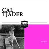 Preciosa de Cal Tjader