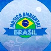 Música Ambiental Brasil de Salsarrica