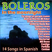 Boleros in the Moonlight by Various Artists